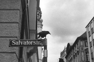 Poesie im öffentlichen Raum, Folge 57. Foto: Volker Derlath
